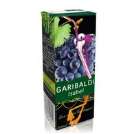 SUCO-GARIBALDI-200ML-INTEGRAL-UVA